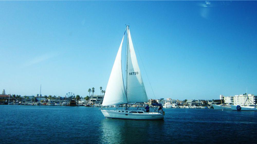 giornata-barca